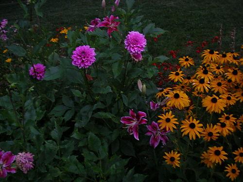 Gts garden at dusk
