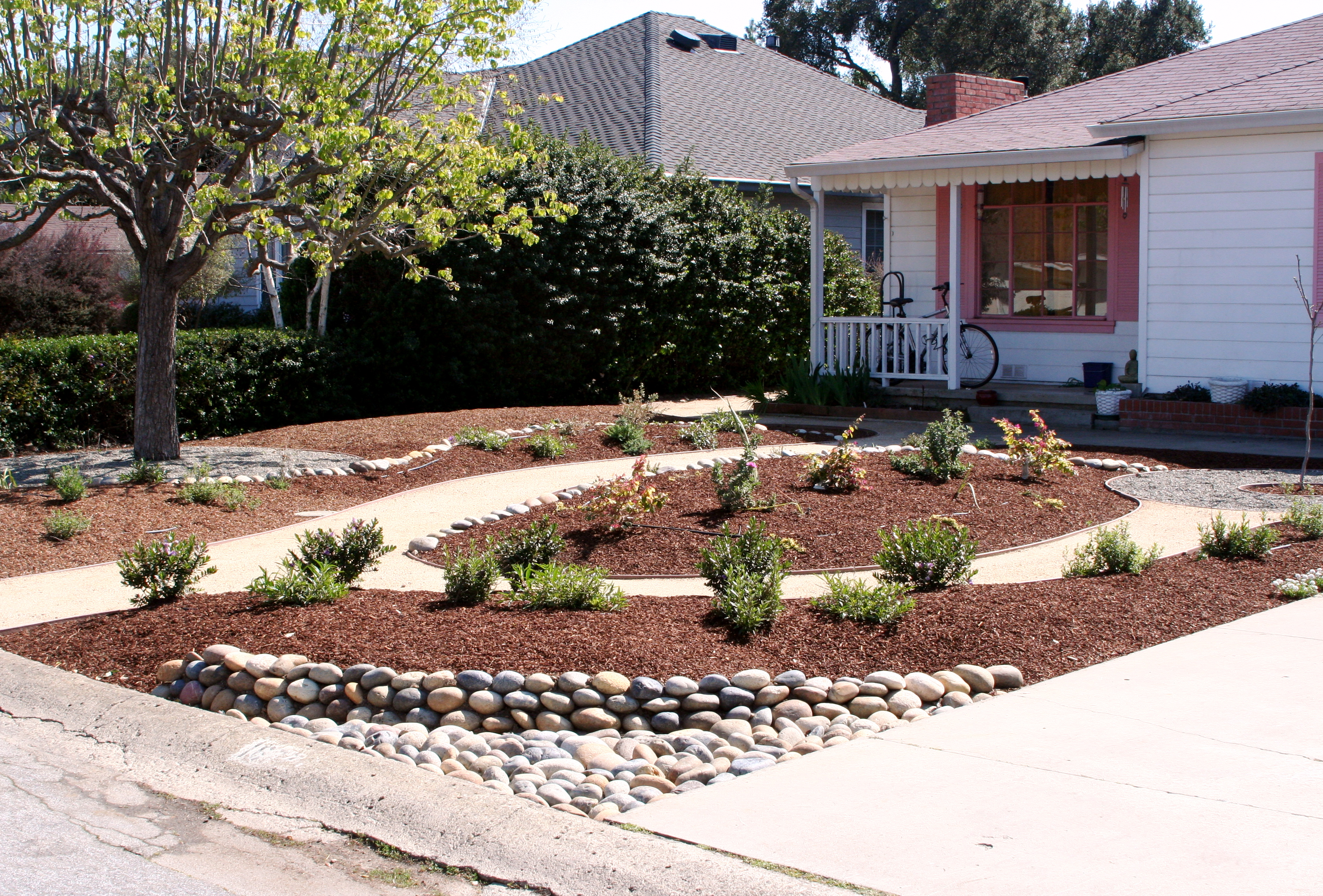 Astonishing Drought Tolerant Yards Ideas Best