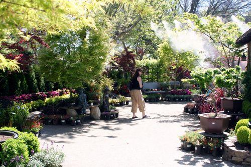 Hhn-plants 4