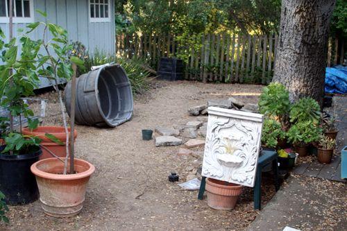 Backyard clean-up 4