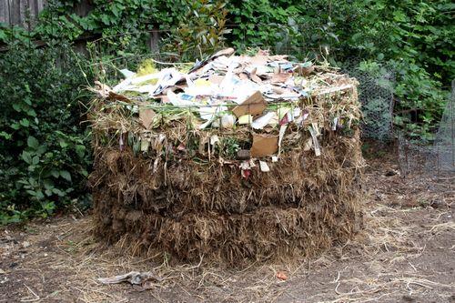 LAF compost
