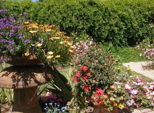 Jen's Garden