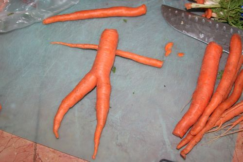 Nude carrot 2