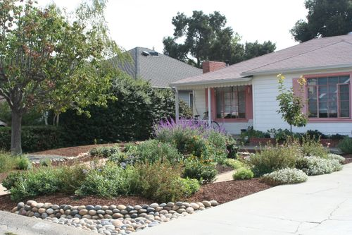 Drought tolerant update