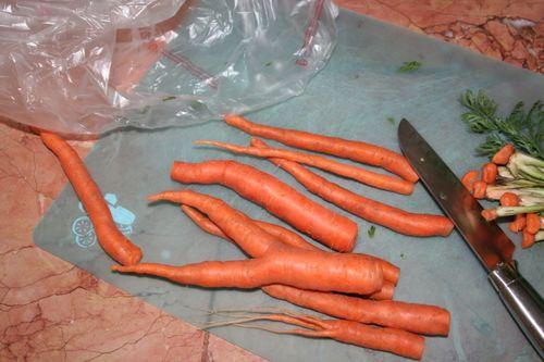 Nude carrot