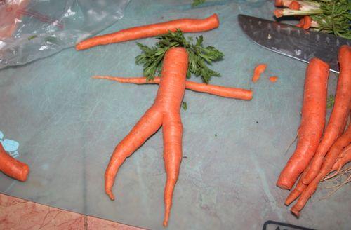 Nude carrot 3