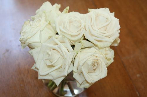 White roses, white powder