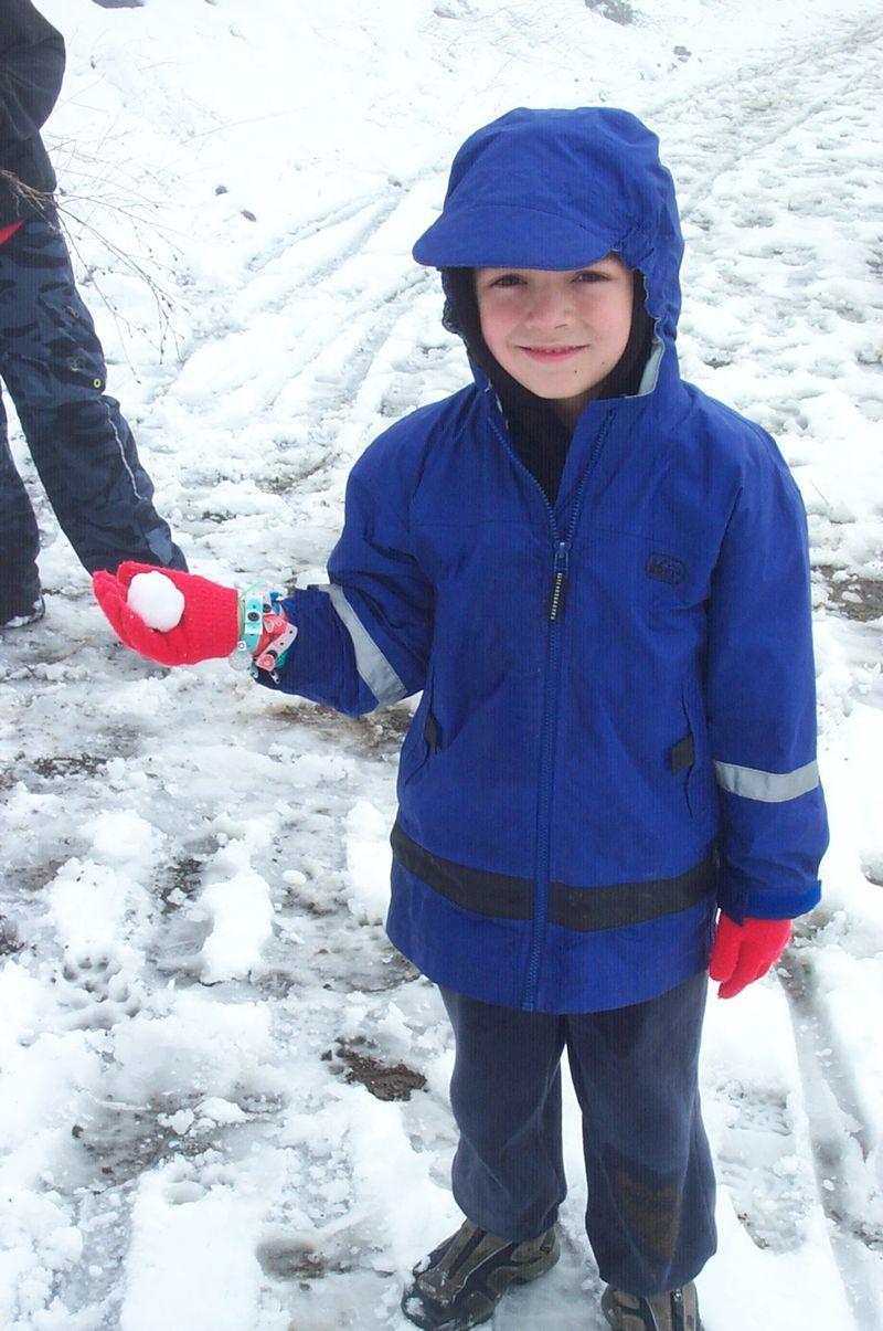 Dash-snow