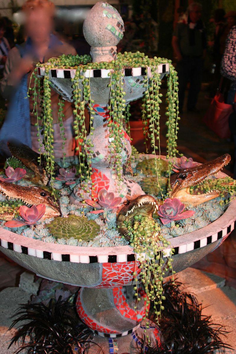 Fountain succulent