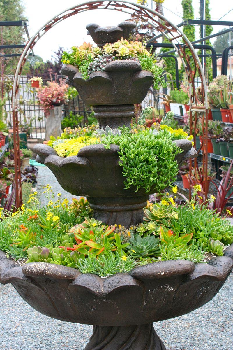 Cordova gardens1