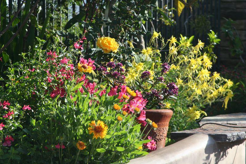 Jens garden 1