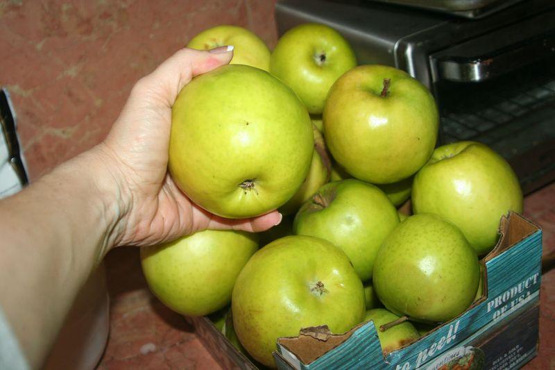 Late apple harvest