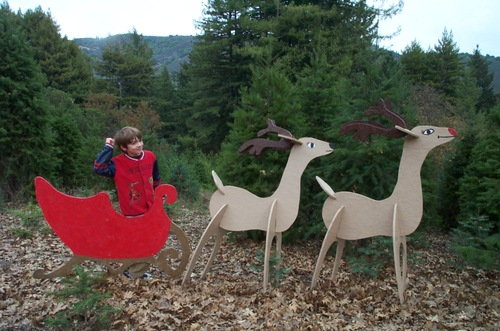 Christmas_tree_farm_dash_sleigh