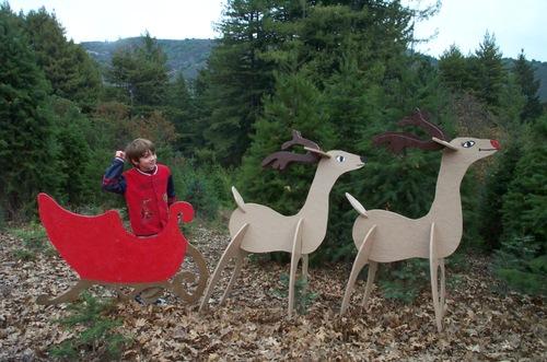 Christmas_tree_farm_dash_sleigh